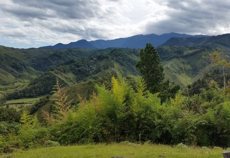 Kaffee Region Salento Kolumbien
