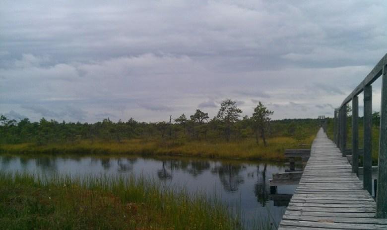 Rundreise Estland