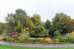 Bunte Pflanzenwelt im St. James's Park London