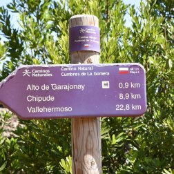 Garajonay - La Gomera - reisenmitkids.de