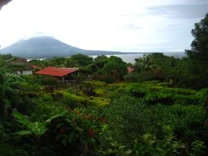 Grüne Isla de Ometepe