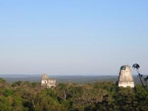 Blick auf Tikal vom Tempel IV