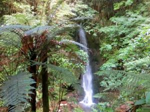 Wasserfall auf dem McLaren Falls Camping Ground