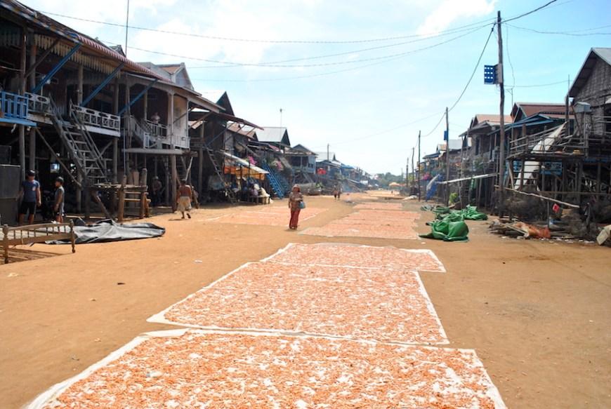 kambodsja_reisetips_flytenden-landsby33