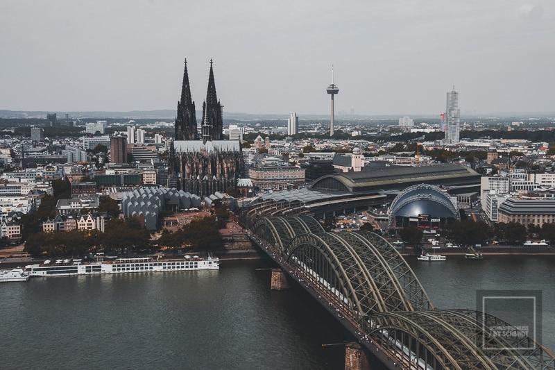 Ein Wochenende in Köln: P!nk, CSD und der Zoo 2