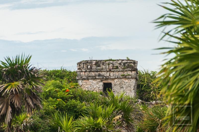 Mexiko Maya 2 - Tulum 4