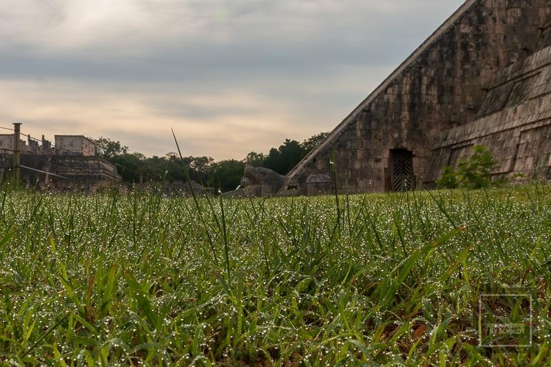 Mexiko Maya 3 - Schlangenkopf