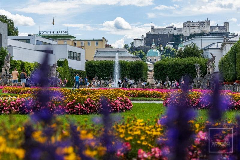 Salzburg Sehenswürdigkeiten - Blick über den Mirabellgarten mit der Festung im Hintergrund