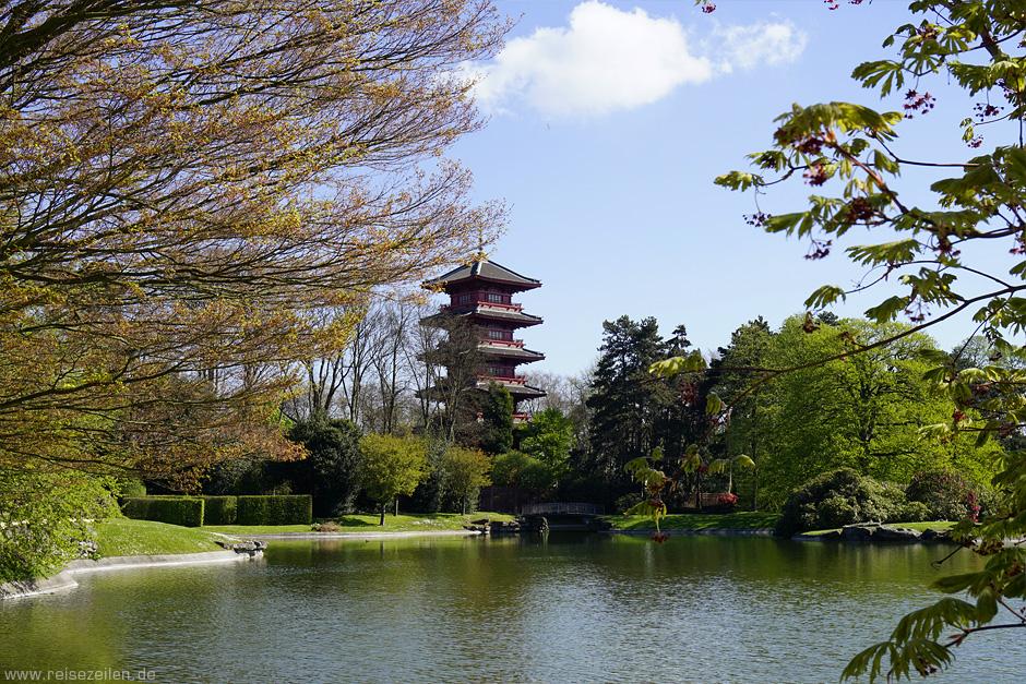 Gewächshäuser Laeken Brüssel Belgien - Blick zum Japanischen Turm