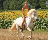 Reiterferien 2016 im Westerwald  reiten entlang von ...