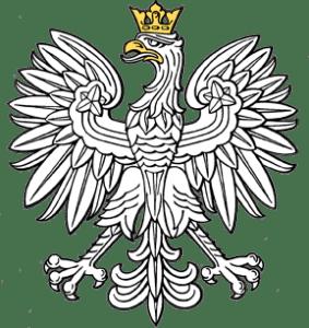 rejestracja_samochodu_gdynia_wejherowo_gdansk_puck