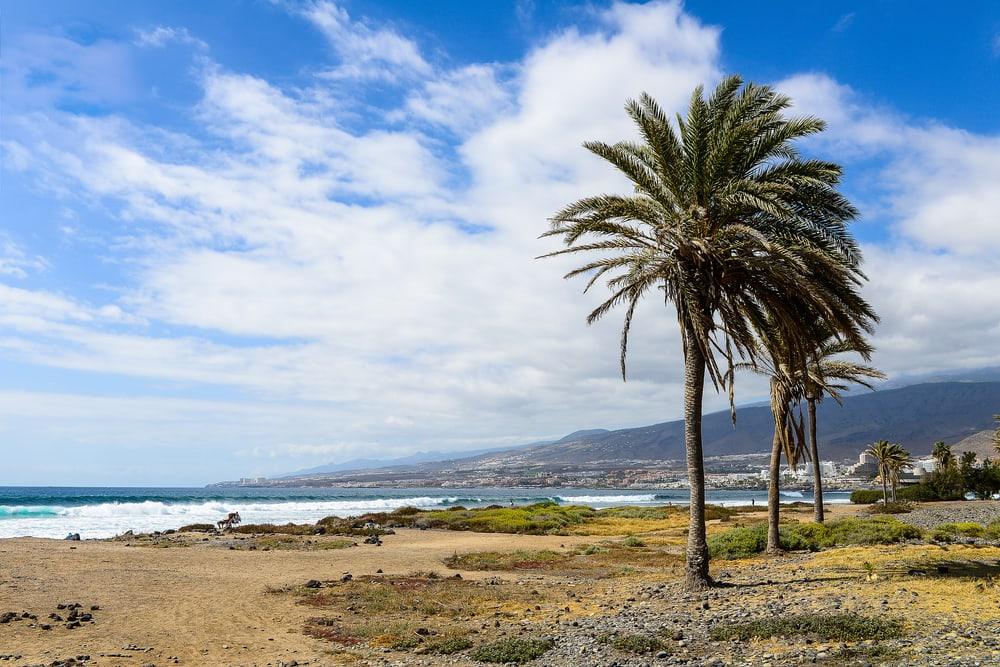 Costa Adeje - Tenerife i Spanien