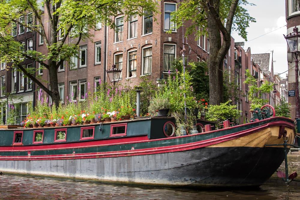 Hyggelig husbåd - Amsterdam i Holland