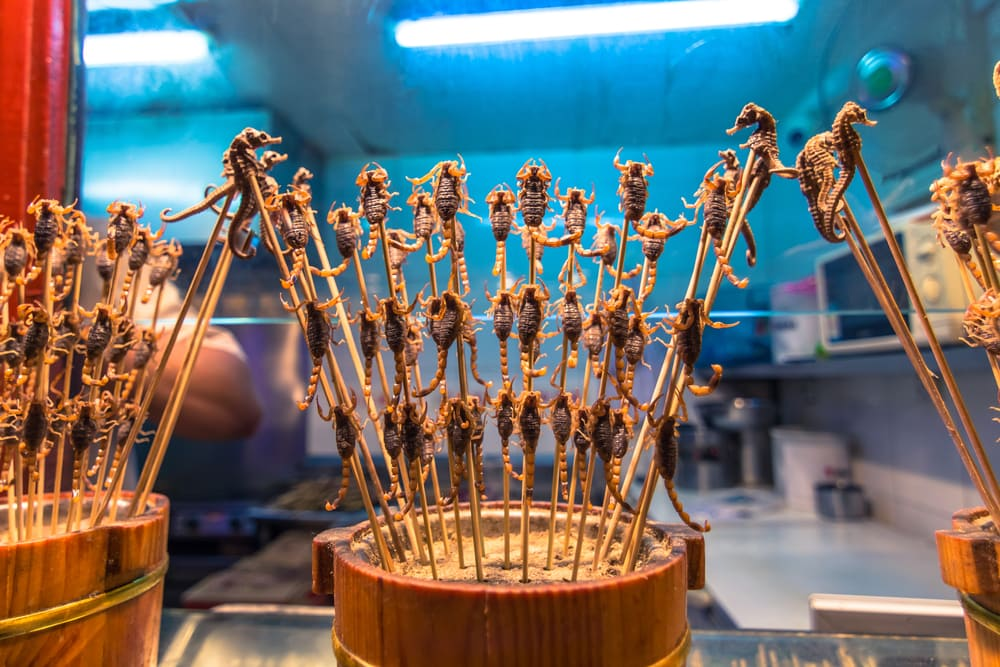Stegte skorpioner - Beijing i Kina