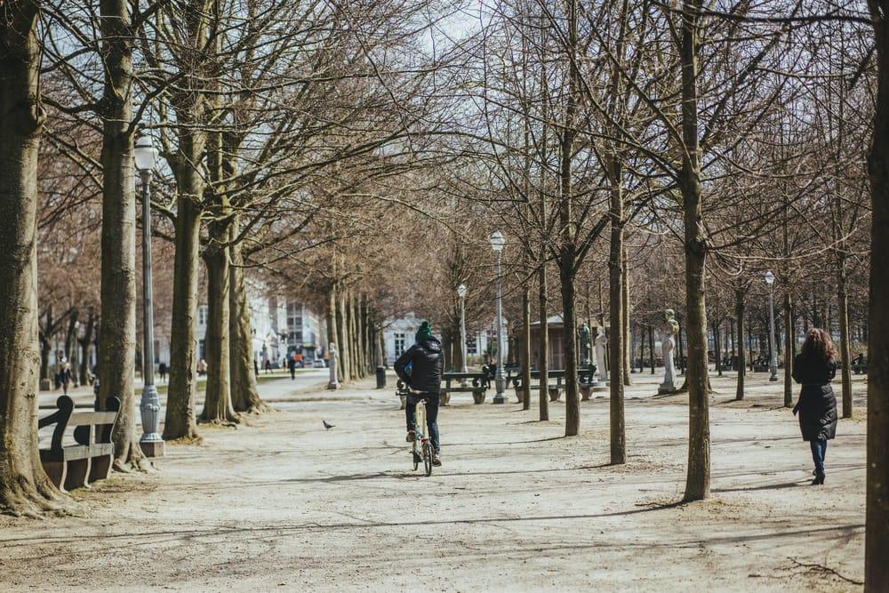 Park i Bruxelles - Belgien