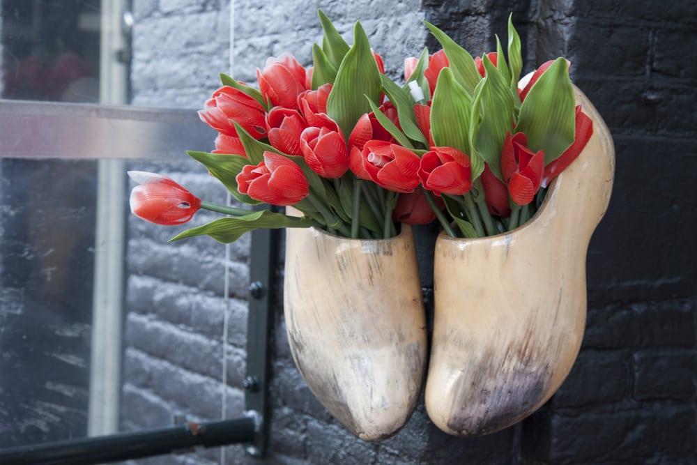 Træsko og tulipaner - Amsterdam i Holland