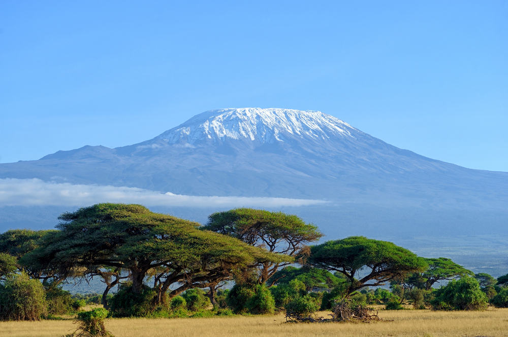Kilimanjaro - Tanzania i Afrika