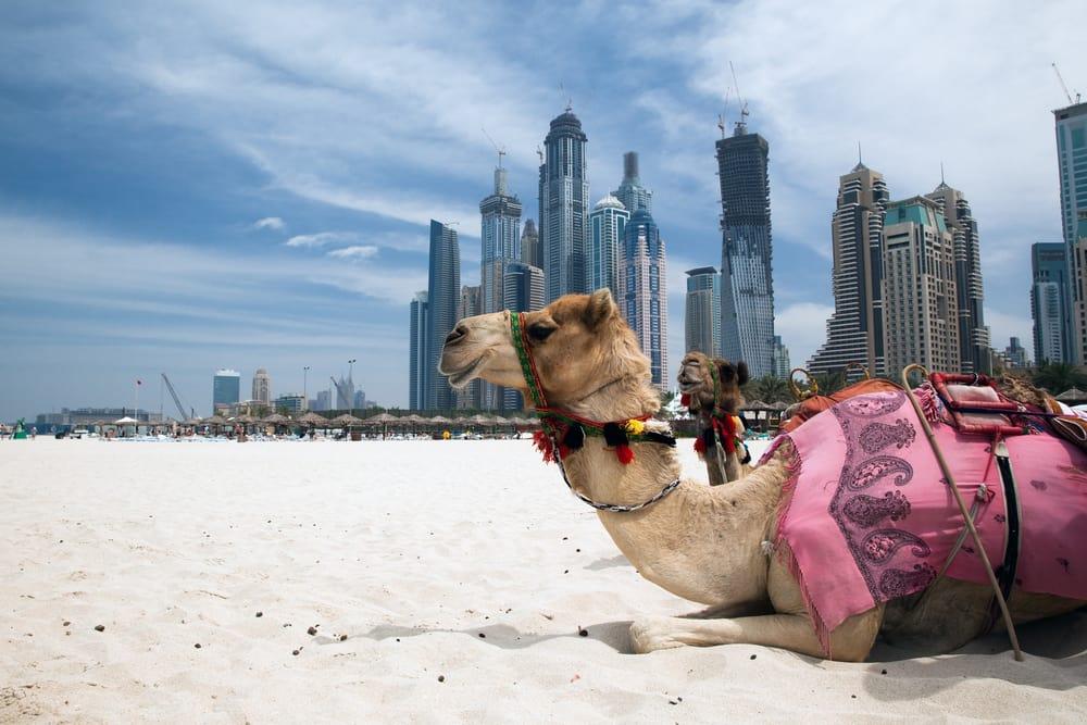 Dubai i juli