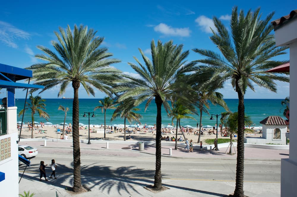 Strand og palmer - Fort Lauderdale i USA