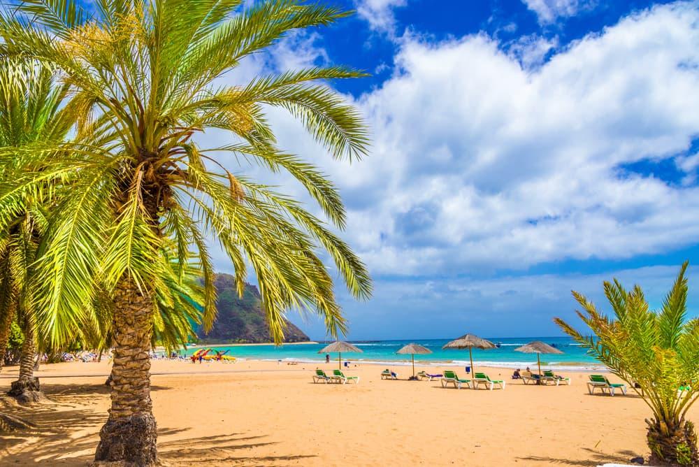Tenerife - De Kanariske Øer i Spanien