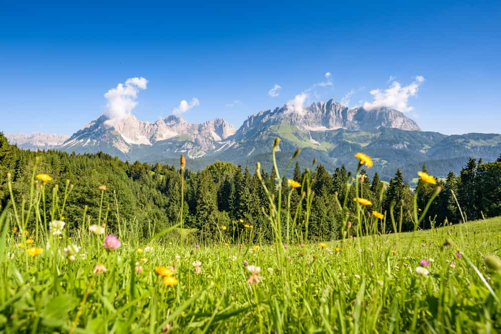 Helpension i Tyrol