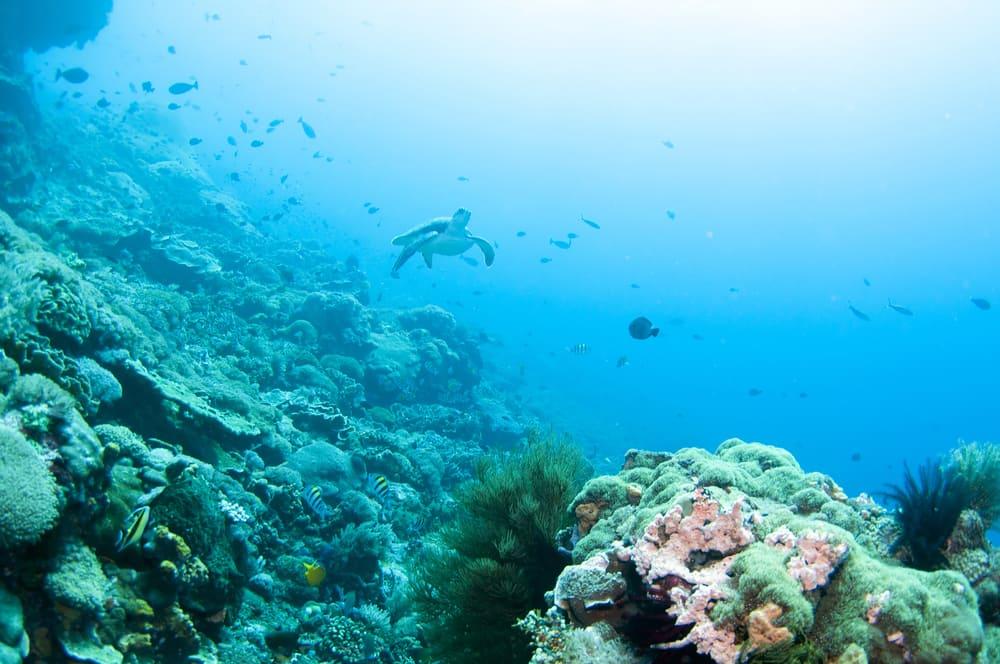 Nusa Lembongan Island - Indonesien