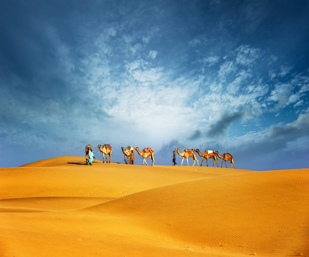 Vind en rejse til Dubai