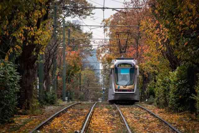 Sporvogn i Bruxelles som kører på rute omgivet af træer i efteråret. I forgrunden togskinner.