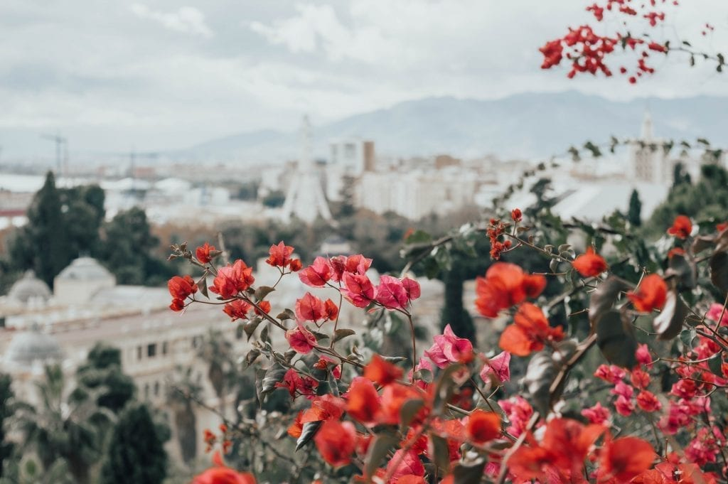 Spanien Malaga by blomster rejser