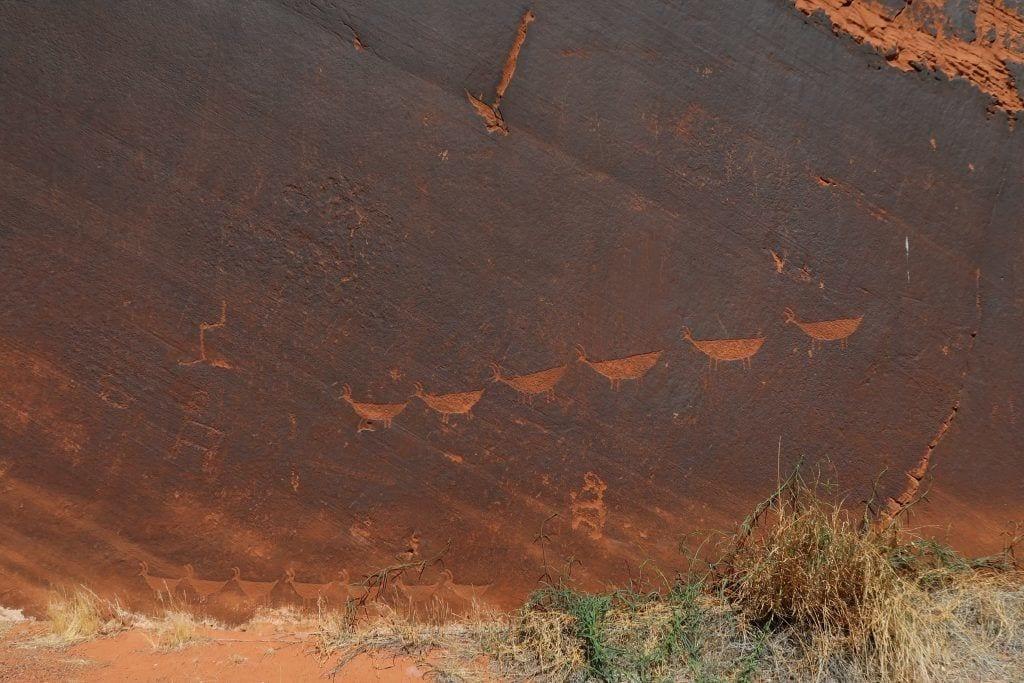 USA - kunst historie natur - rejser
