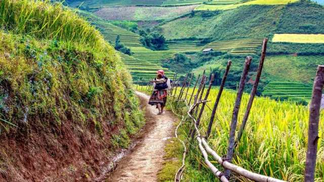 Vietnam - nature north vietnam central vietnam - travel