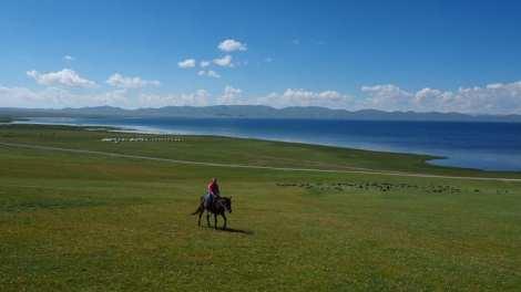 キルギスタンへの旅行-馬の自然-旅行