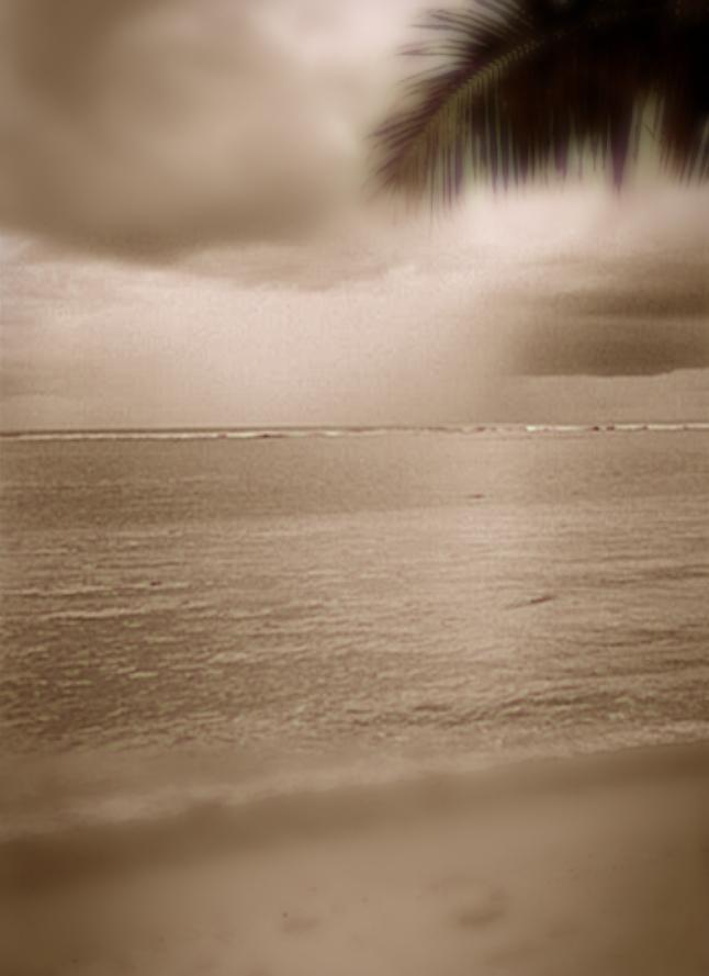 Samoa rejse til Samoa palme strand - nb: Kun til galleri pga. str.