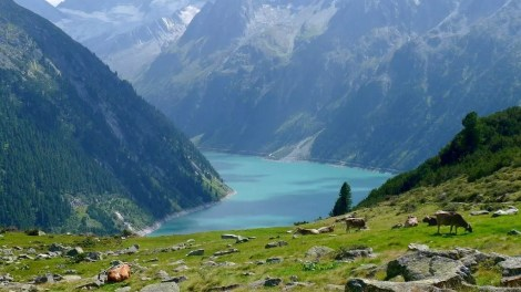 Zillertal-østrig-bjerg