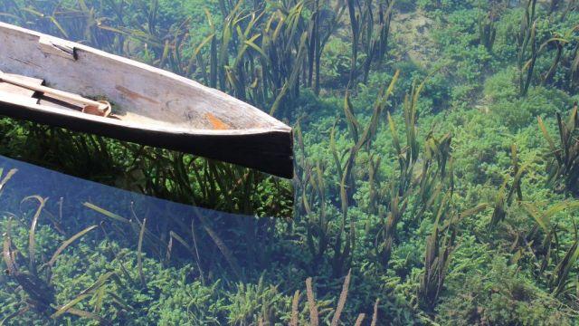 Sulawesi - nature - travel