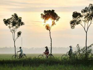 Vietnam - solnedgang - cykel - rejser