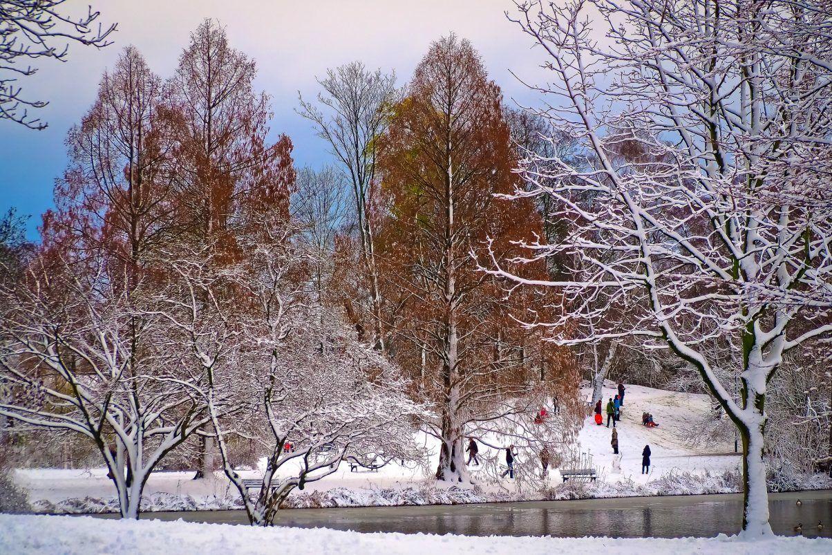 kælk-skov-vinter-rejser