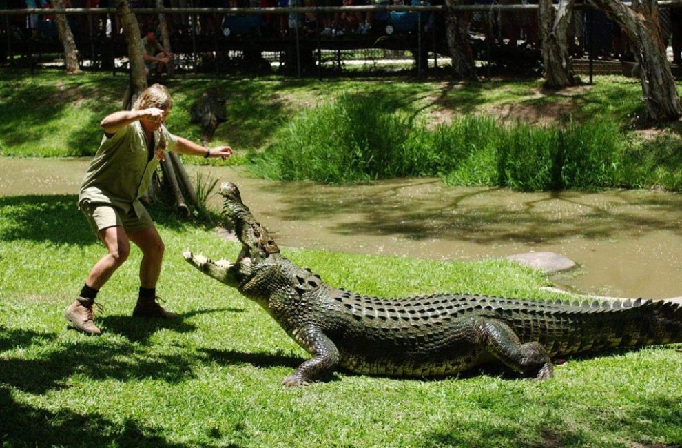 Reisplezier - Australische krokodil