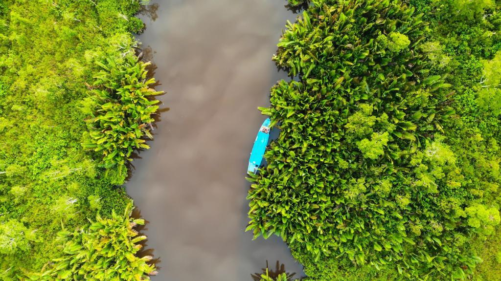 Borneo, lake, nature, rejse