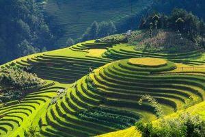 Vietnam - campi di riso, montagne - viaggi