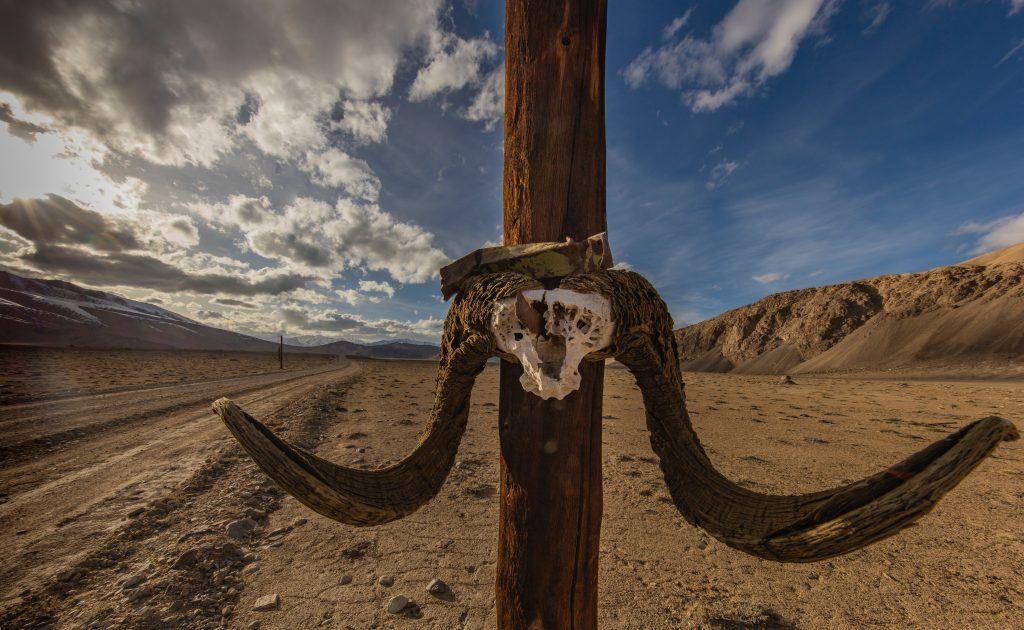 Tadsjikistan - Pamir Highway, kranie - rejser - tajikistan