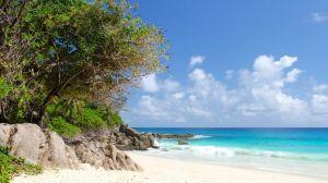 seychellene, strand