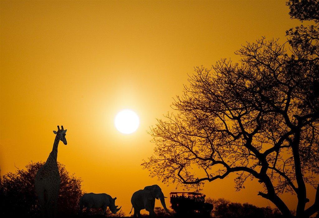 Sydafrika - rejser, valuta