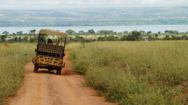 Uganda - safari - travel