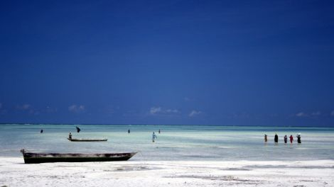 Afrika Tanzania Zanzibar Paje Rejser