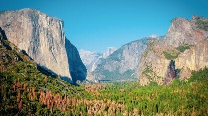 USA Californien Yosemite Nationalpark Road trip Rejser