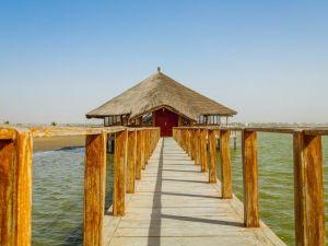 Senegal Kaolack Africa Travel