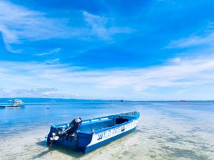 Philippines Panglao island travel