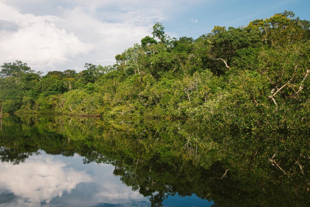 Peru - Amazon River - forest - travel