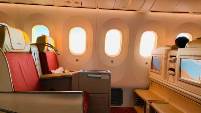 Indien - Air India, fly - rejser